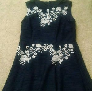 Taylor Fit and Flair Dress